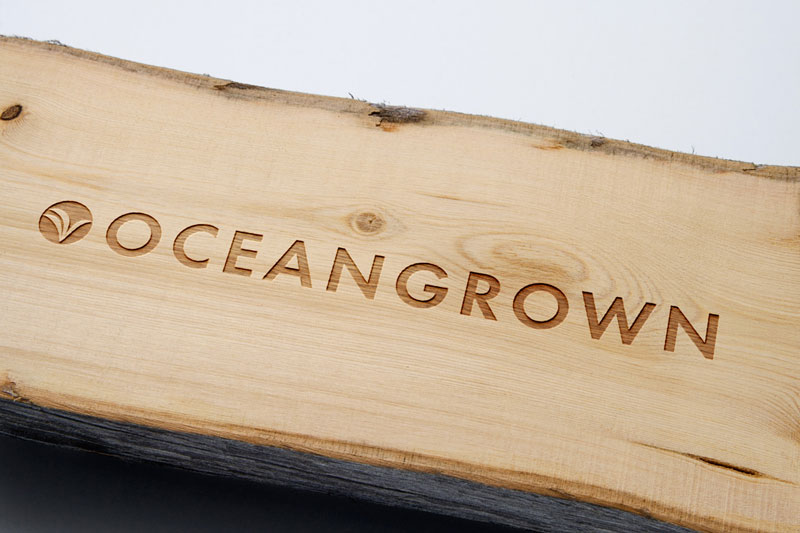 Located in Vero Beach, Ironside developed a unique brand for OceanGrown.